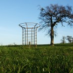 metal tree guards